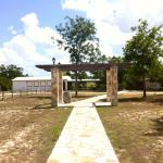 Our lovely wedding arch that leads to the hall and deck that overlooks the San Marcos River