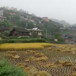 Qingman Miao Village on the hillside