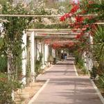 Winzrik Resort & Thalasso Djerba Photo