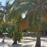 Foto de Dream Bay Resort