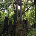Kozma Cemetery Foto