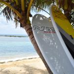 Paddle Boards available to rent
