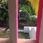 Habitaciones viejas, sucias, con vista a montones de tierra, palmeras descuidadas y basura, con