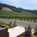 View from the entrance of Hanna winery
