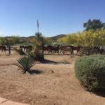 Foto de Rancho de los Caballeros