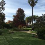Albury Botanic Garden Foto
