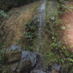 A waterfall on the property