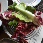Valokuva: Carelia Brasserie