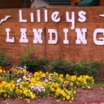 Foto di Lilleys' Landing Resort & Marina