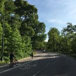 Foto de Central Park Bike Rentals & Pedicab Tours