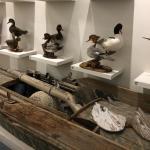 Foto de Museum of Chincoteague