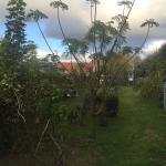 Photo of Quinta dos Bravos