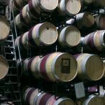 Foto de Alpha Omega Winery