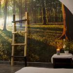 Salle de massage futon