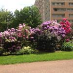 Photo de Mercure Saint Etienne Parc de L'Europe