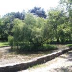 Topcider Park Foto
