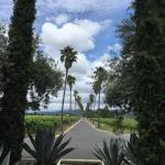 Foto de Round Pond Estate