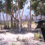 Foto Fairy Glen Private Game Reserve