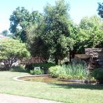 Luther Burbank Home and Gardens Foto