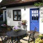 Blue Willow Guest House Photo