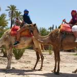 Photo of Maroc Quad Passion - Day Tours