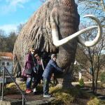 Südostbayerisches Naturkunde- und Mammut-Museum Siegsdorf Foto