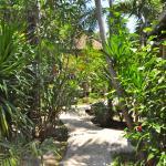 Photo of Black Sand Homestay