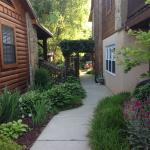 The path from Lodge #1 to the dining area