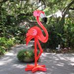Several sizes of flamingos.