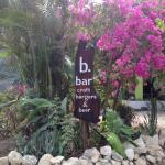 B. Bar