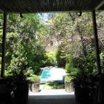 Garden & pool from the Bar Terrace