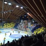 Foto de Vaillant Arena