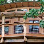 Doe Bay Treehouse