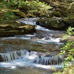 Cascade on Big Fiery Gizzard Creek