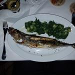Photo of Restaurant Palit