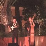 Beautiful Hawaiian serenade