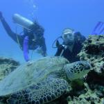 Rainbow Scuba Hawaii Foto