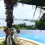 Photo de Hotel Manastir