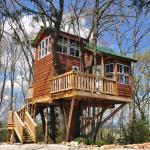 The Sunset Tree House