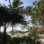 Bilde fra Tita Tulum Hotel Ecologico
