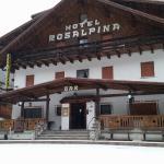 Photo de Hotel Rosalpina