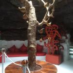 Foto de Casa-Museo César Manrique