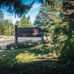 LewMarNels Front Entrance Garden