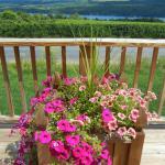 Foto de Keuka Lake Wine Trail
