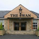 Фотография The Swan