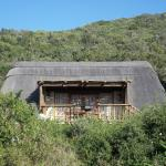 Matyholweni Cottage blends very well with the bush