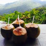 Perfect place for traditional Caribbean drinks.