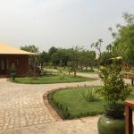 Photo de Bagan Lodge