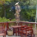 Bird Pole
