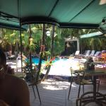 We are sitting in the restaurant area looking out onto the pool which was birght and sunny